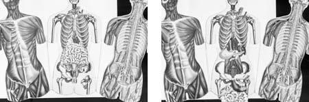 zwart wit afbeelding Aletta Jacobs boek
